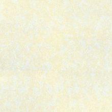 کاشی و سرامیک آتنا پرسلان سایز ۶۰*۶۰ ارگ